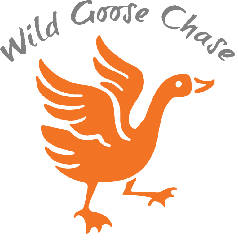 Character Stories Wild Goose Chase